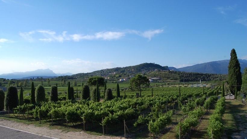 Tenuta preella lamberti restaurant wineshop cavaion for Casa moderna gardone